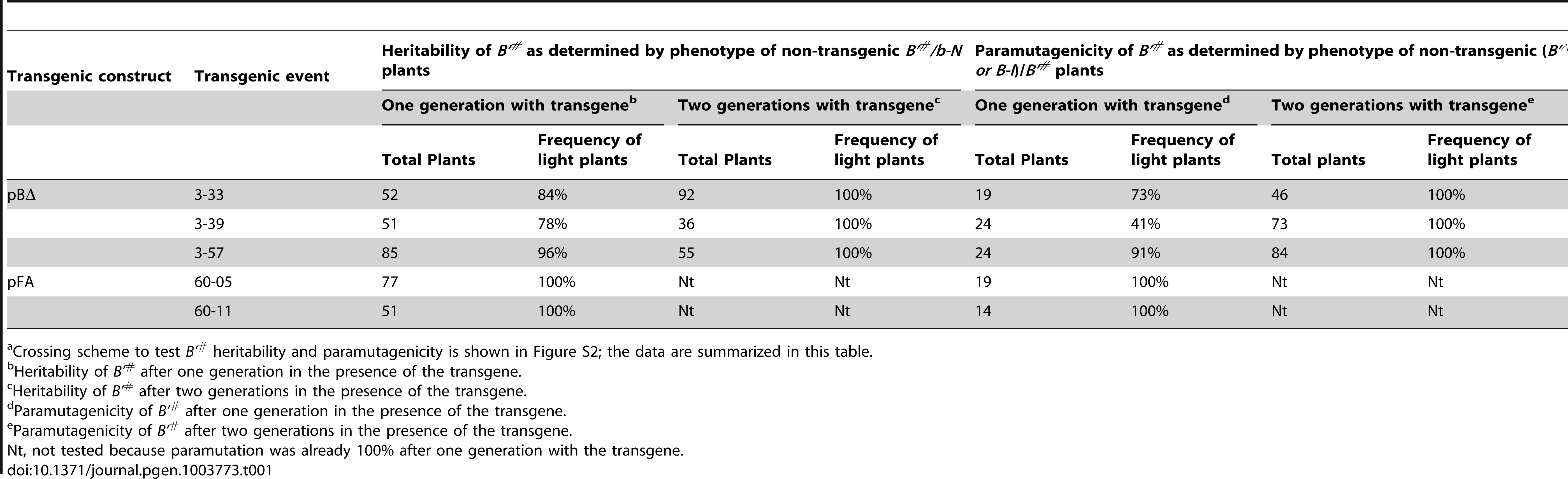 Heritability and paramutagenicity of transgene-induced <i>B'<sup>#</sup></i> silencing<em class=&quot;ref&quot;>a</em>.