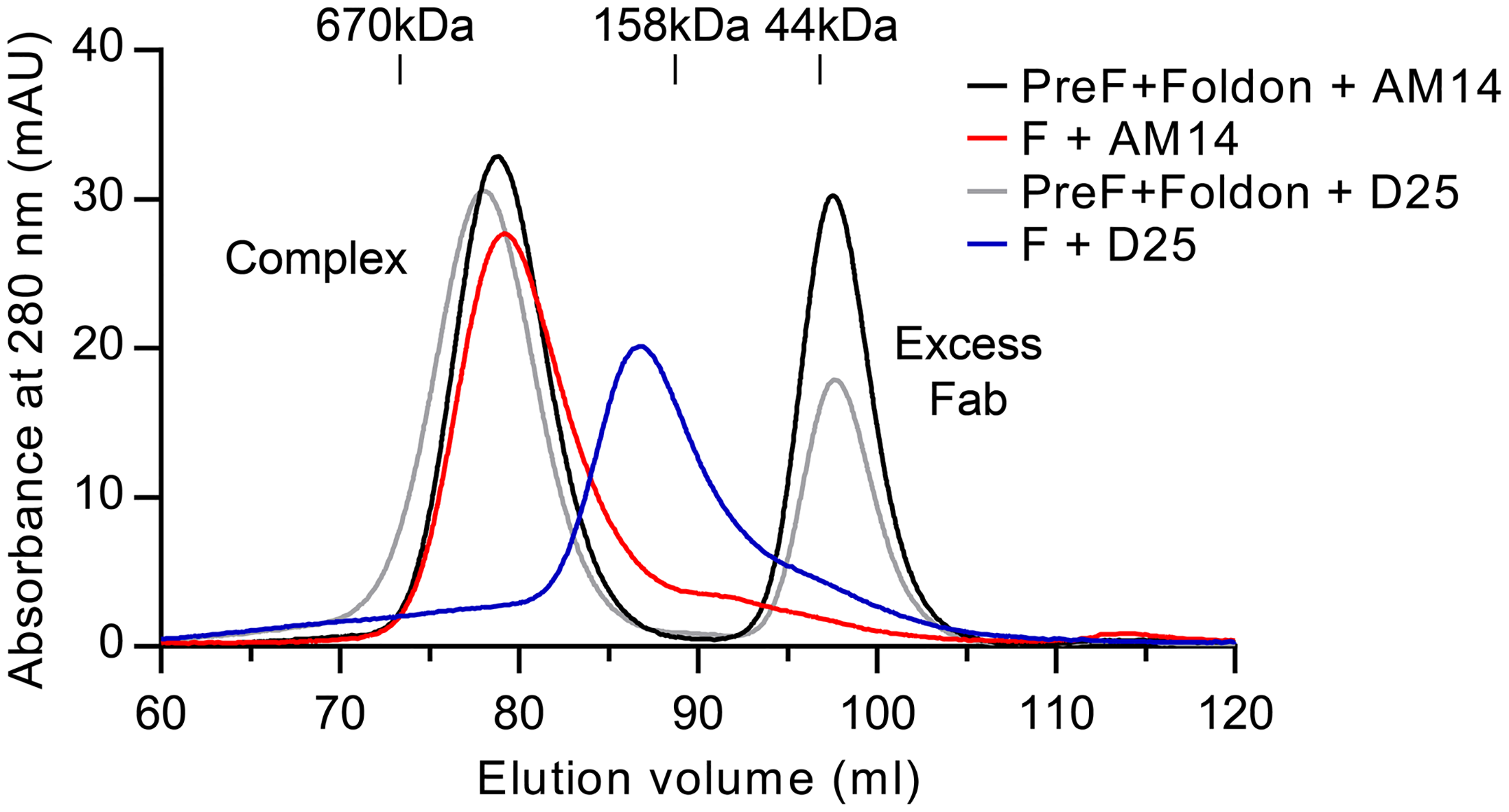 AM14 stabilizes RSV F trimer in the absence of the foldon trimerization motif.
