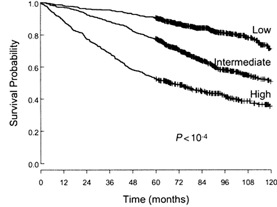 Přežívání nemocných podle FLIPI indexu. Dle: Solal-Céligny et al., Blood 2004.