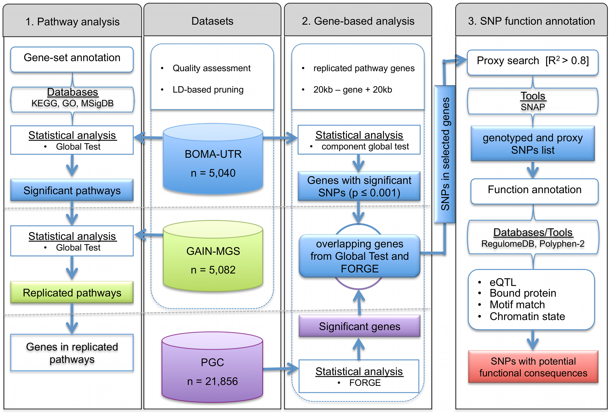 Flowchart for (1) detection and replication of schizophrenia associated pathways and (2) identification of the most informative genes, and (3) functional annotation of single nucleotide polymorphisms in the genes of interest.