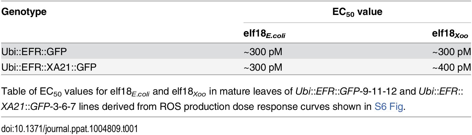 Expression of EFR::GFP and EFR::XA21::GFP in rice confers a high sensitivity to elf18<sub><i>E</i>.<i>coli</i></sub> and elf18<sub><i>Xoo</i></sub>.