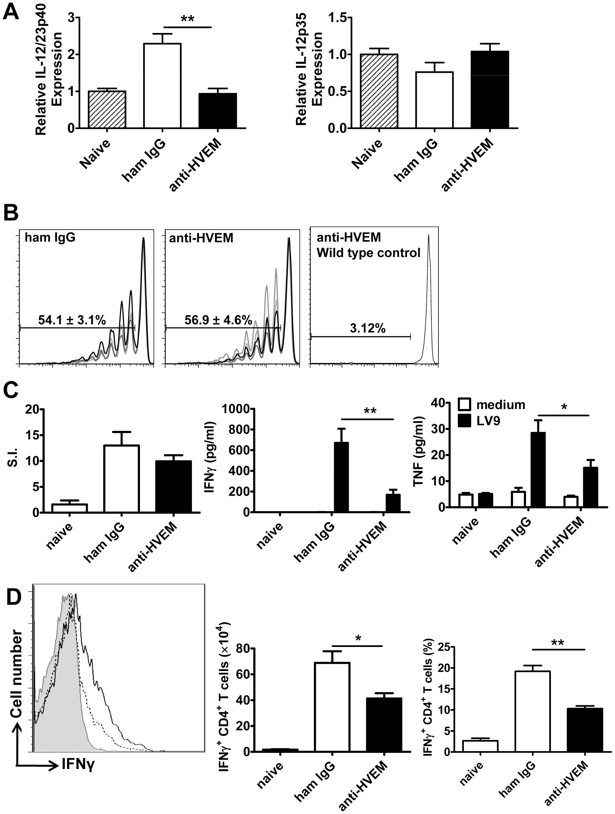 LIGHT-HVEM interactions are required for early DC IL-12/IL-23p40 mRNA accumulation, and antigen-specific CD4<sup>+</sup> T cell IFNγ and TNF production.