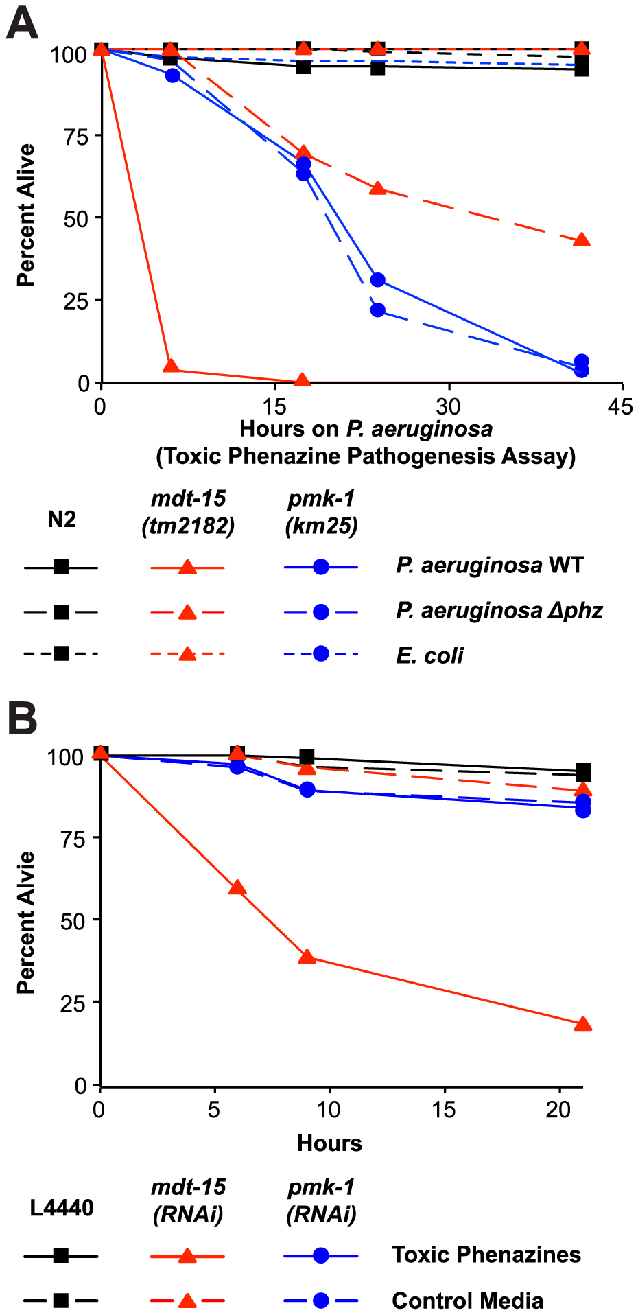 Resistance to <i>P. aeruginosa</i> phenazine toxins requires MDT-15.