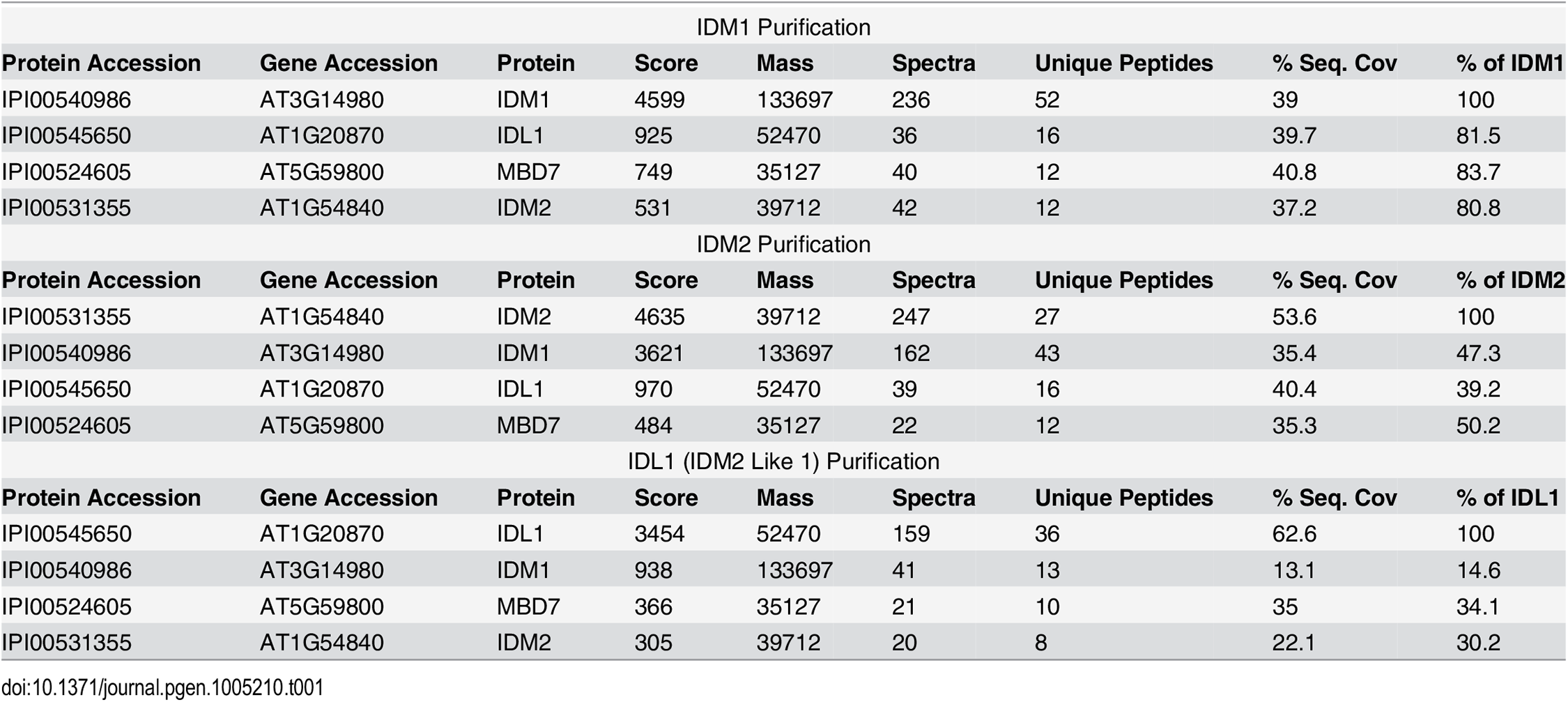 Mass-spectrometric analysis of IDM1, IDM2 and IDL1 co-purifying proteins.