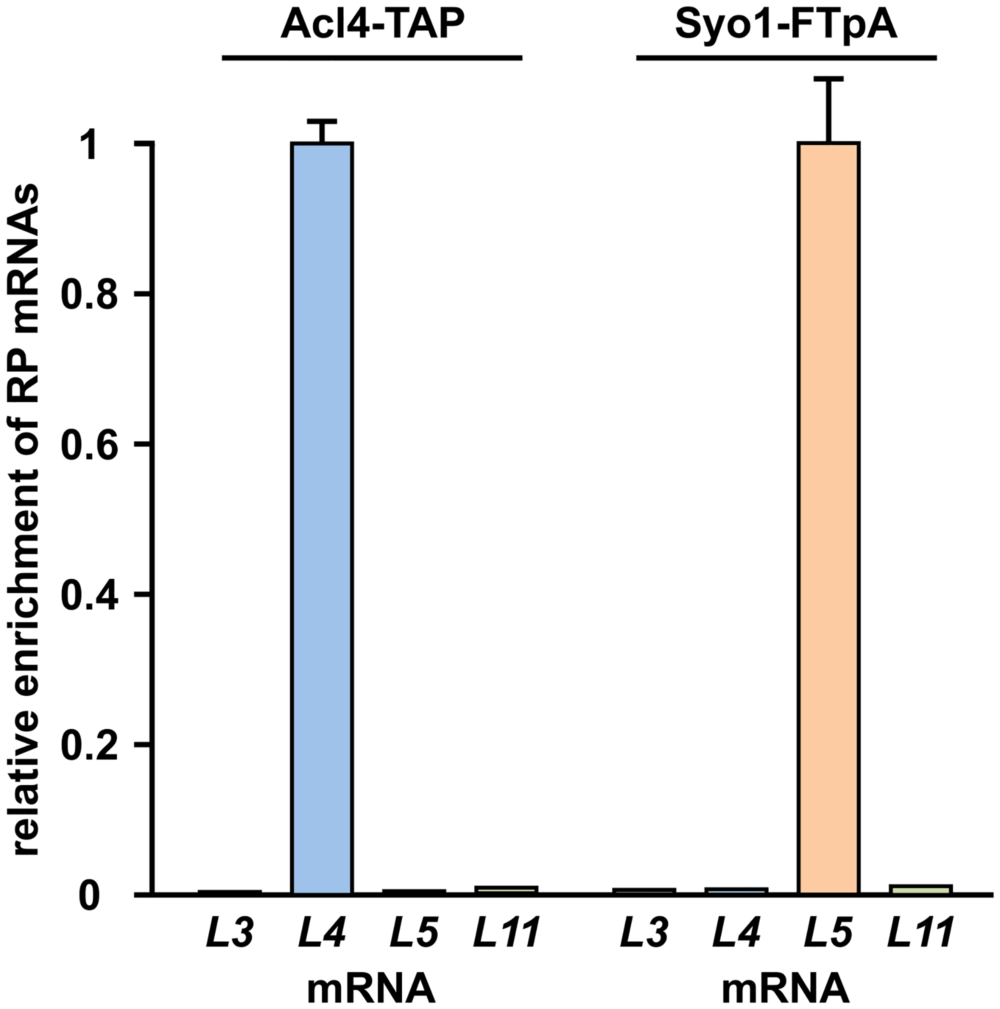 Co-translational capturing of Rpl4 by Acl4.