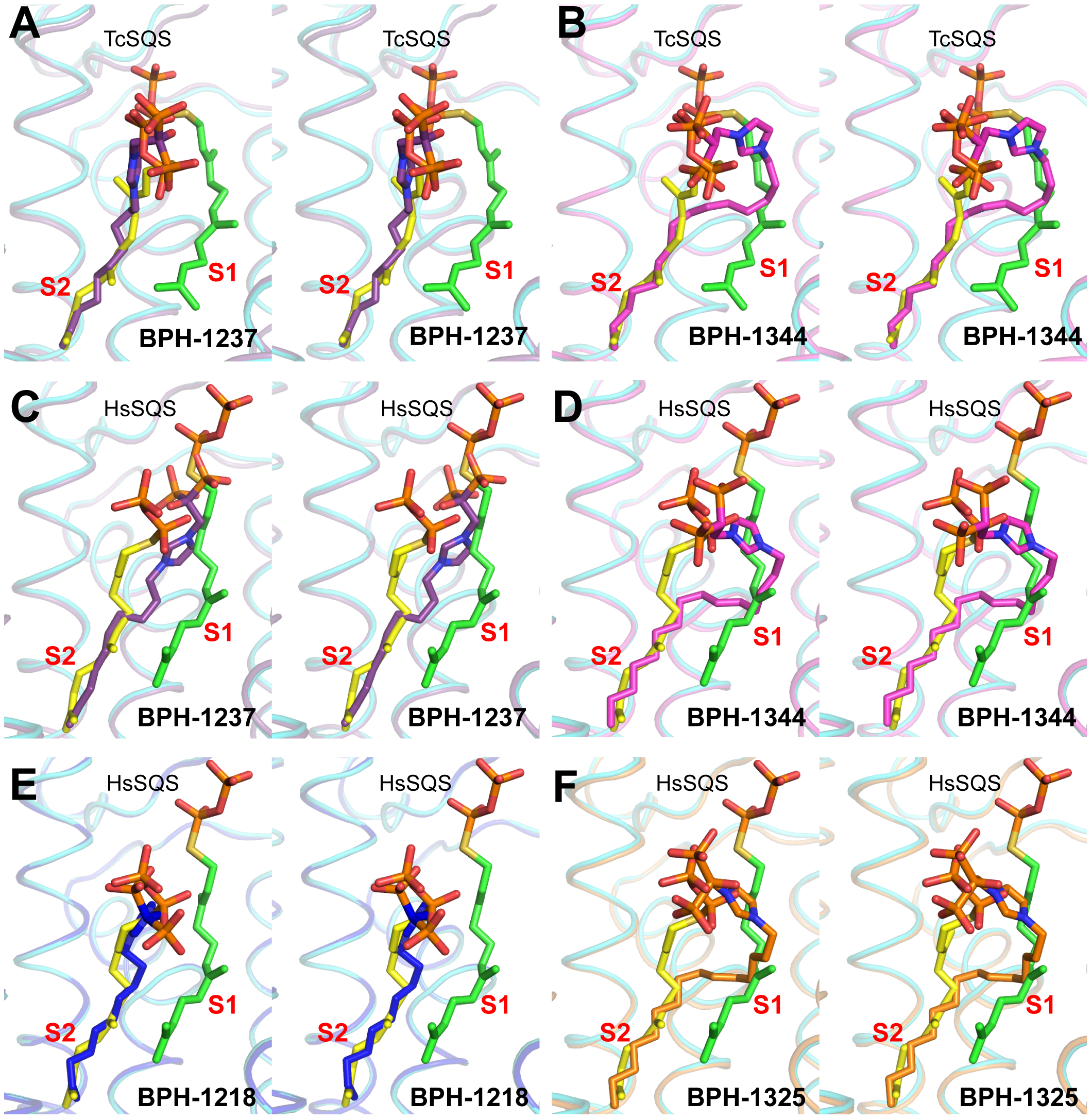 Complex Structures of SQS with lipophilic bisphosphonate inhibitors.