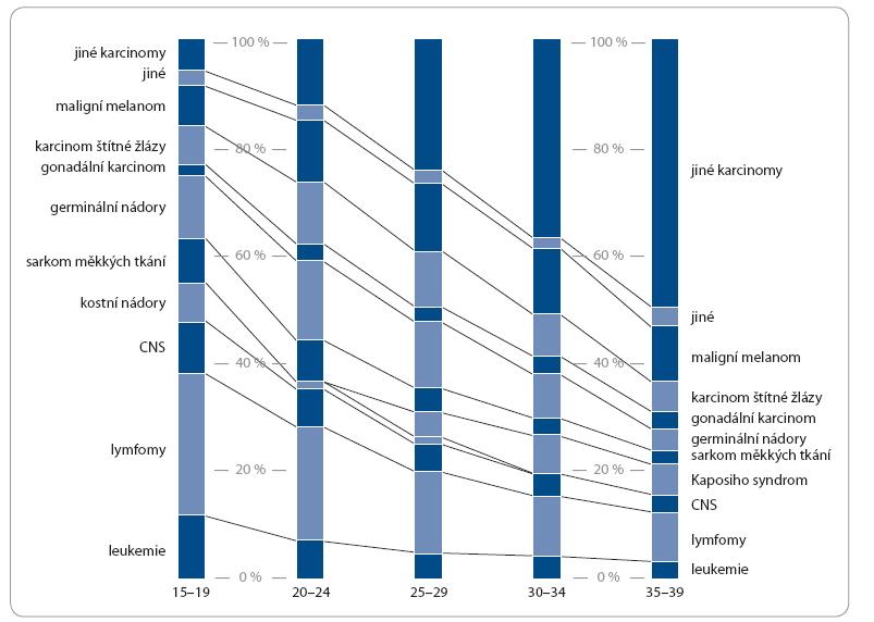 Distribuce typů nádorů dle věku v USA [10].