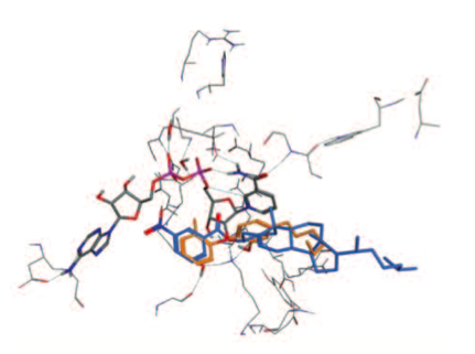 Fig. 2. The pose of the ZINC 0874093 overlaid with original ligand