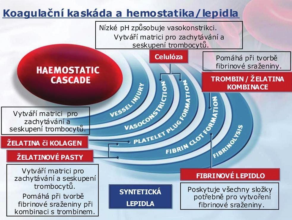 Koagulační kaskáda a hemostatika/lepidla