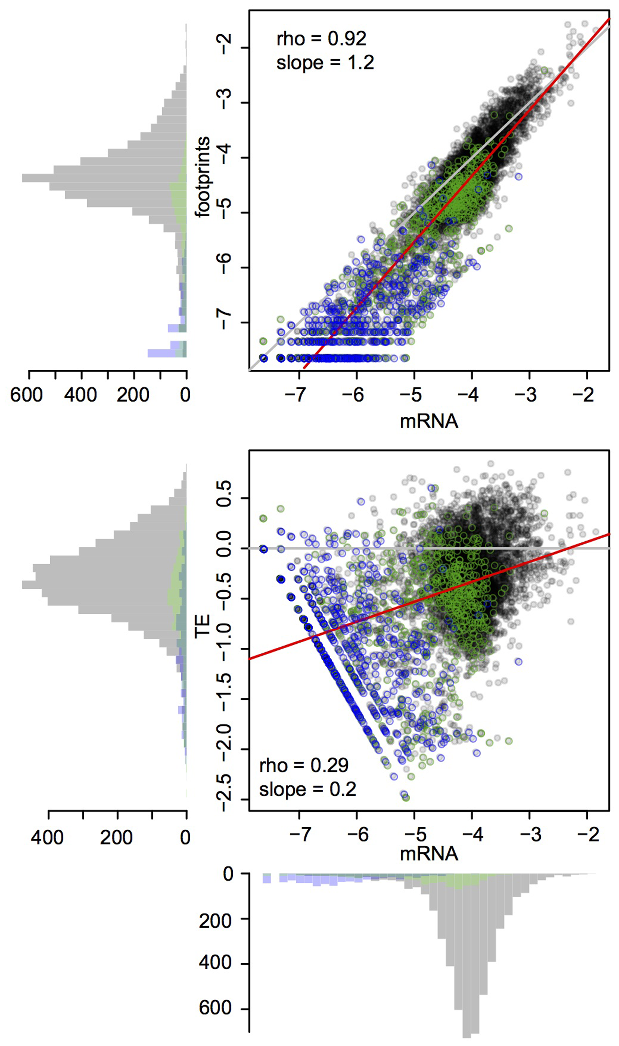 Global mRNA and footprint abundance.