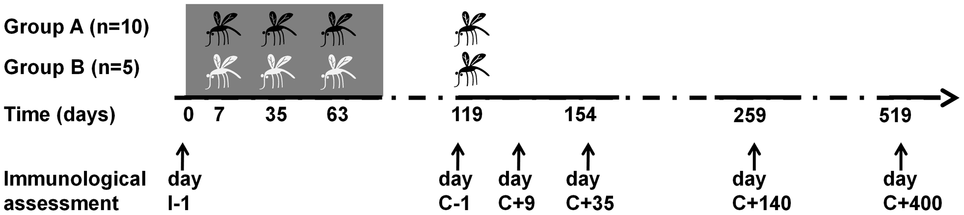 Flowchart of Experimental Human Malaria Infection study.