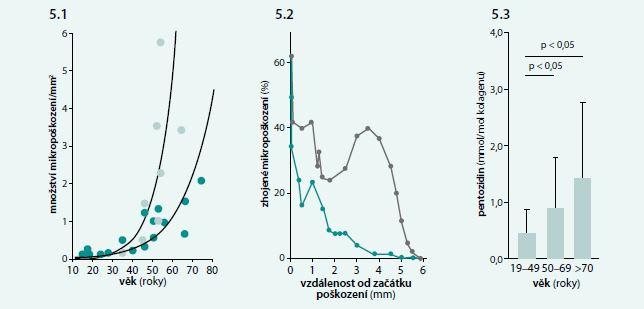 (5.1) Závislost mezi denzitou mikropoškození kosti a věkem u žen (světle zelené body) a u mužů (světle zelené body). (5.2) Hojení mikropoškození kosti ve 34 letech (šedá křivka) a v 85 letech (zelená křivka). (5.3) Závislost obsahu pentozidinu ve femuru na věku. Upraveno podle [54–56]