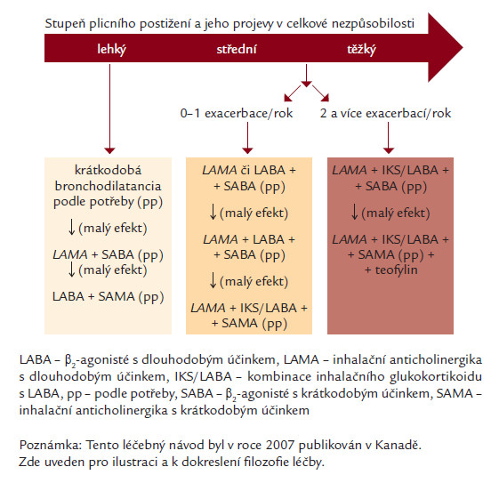 Schéma kanadského doporučení pro léčbu CHOPN (dle [17]).