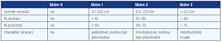 SES-CD Simple Endoscopic Score – Crohn's Disease