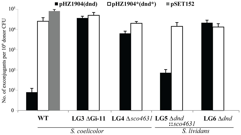 Restriction of plasmids expressing the <i>dndA-E</i> gene cluster by <i>Streptomyces</i> strains containing <i>sco4631</i>.