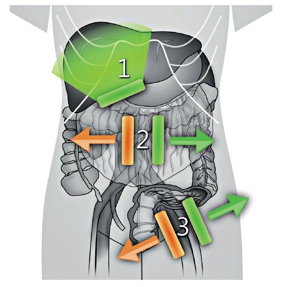Postup u transabdominálního ultrazvuku
