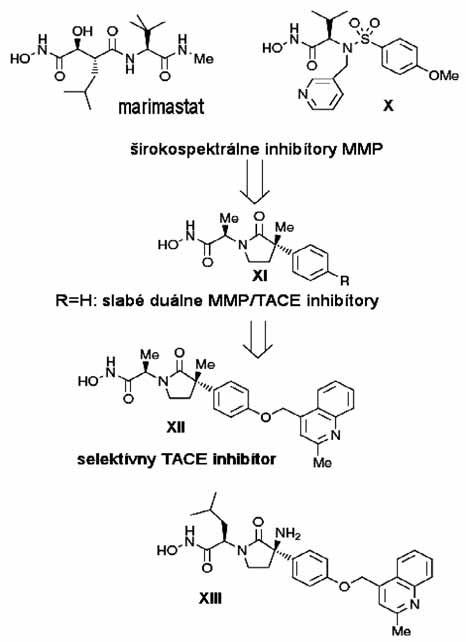 Projektovanie selektívnych inhibítorov TACE <sup>3)</sup>