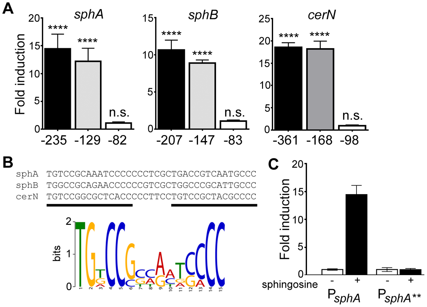 Determination of the probable SphR binding site from SphR-regulated promoters.