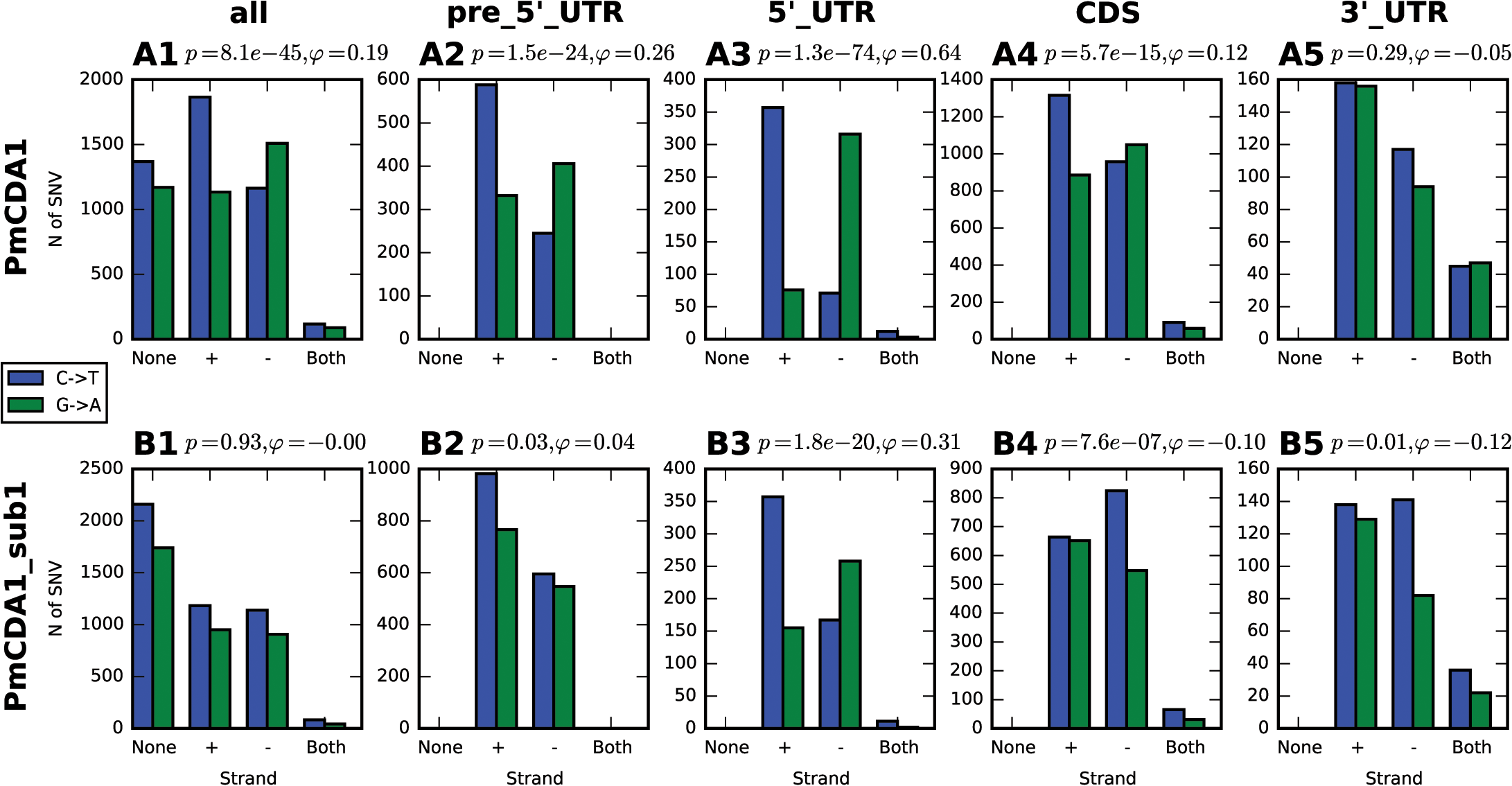 Analysis of strand-specificity of mutations reveals the predominant deamination of non-transcribed DNA strand and attenuation of this effect in strains defective in Sub1.