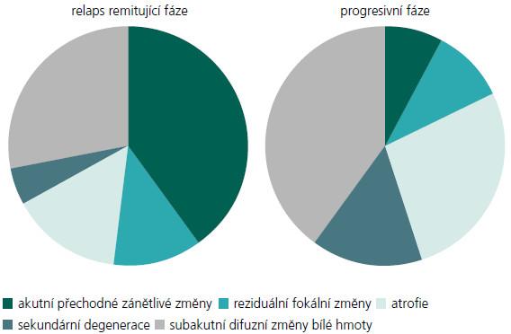 Progrese onemocnění může být vyjádřena jako změna v proporcích viditelné aktivity onemocnění a přechod do trvalého poškození. Jednotlivé výseče grafu znázorňují změnu v poměru akutních lézí a difuzní mozkové patologie. Akutní tranzitorní zánět a reziduální fokální změny jsou známkami fokální aktivity. Atrofie, sekundární degenerace a subakutní patologie bílé hmoty jsou známkami difuzní aktivity [dle 47].