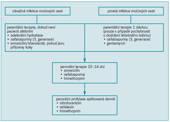Schéma 5. Léčba febrilní infekce močových cest u dětí.