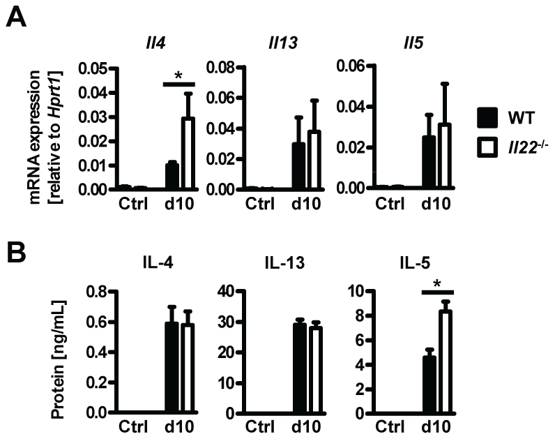 <i>Il22</i><sup>−/−</sup> mice have normal Th2 responses.