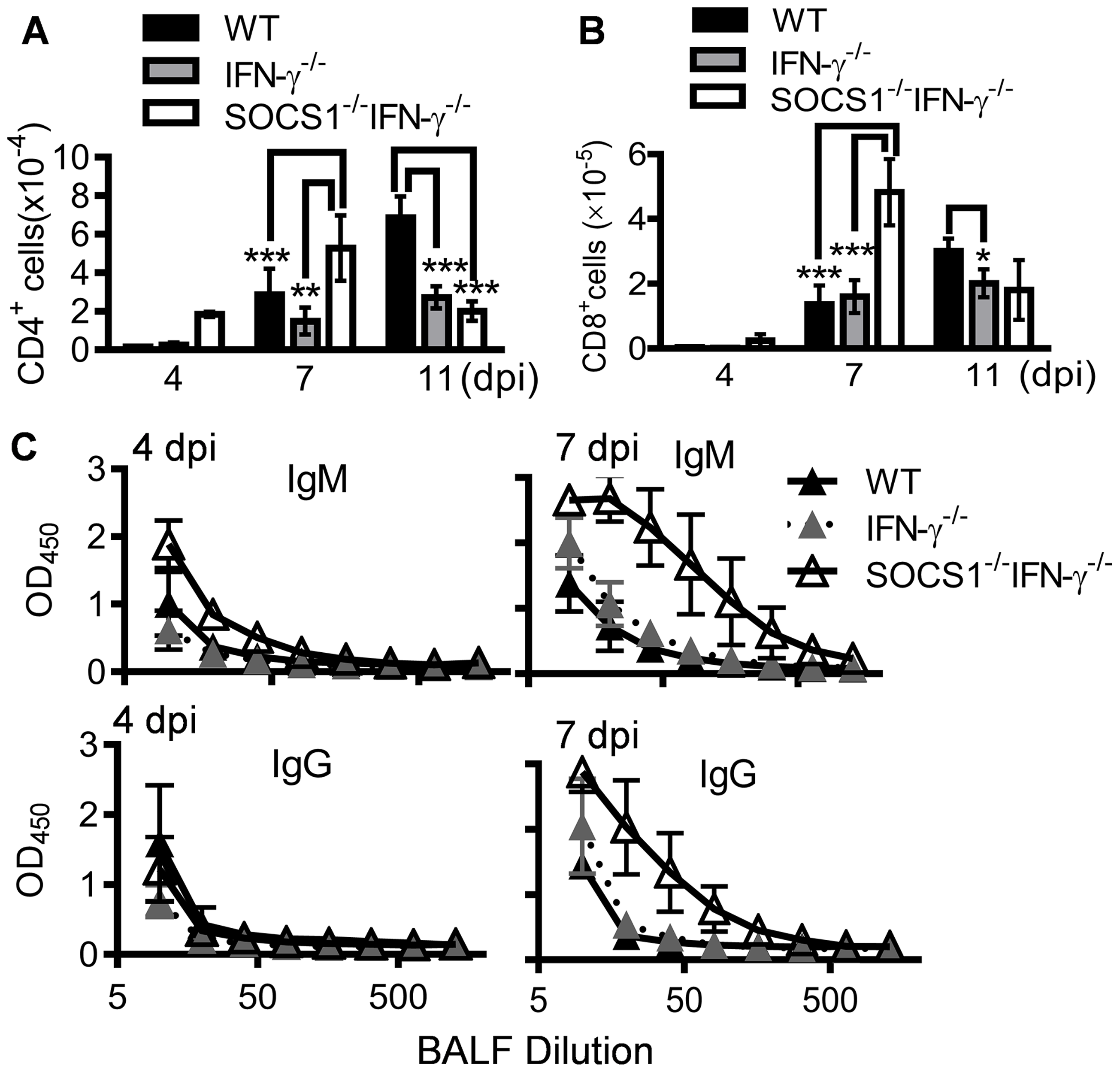 Influenza infection improves adaptive immune responses in SOCS1<sup>−/−</sup>IFN-γ<sup>−/−</sup> mice.