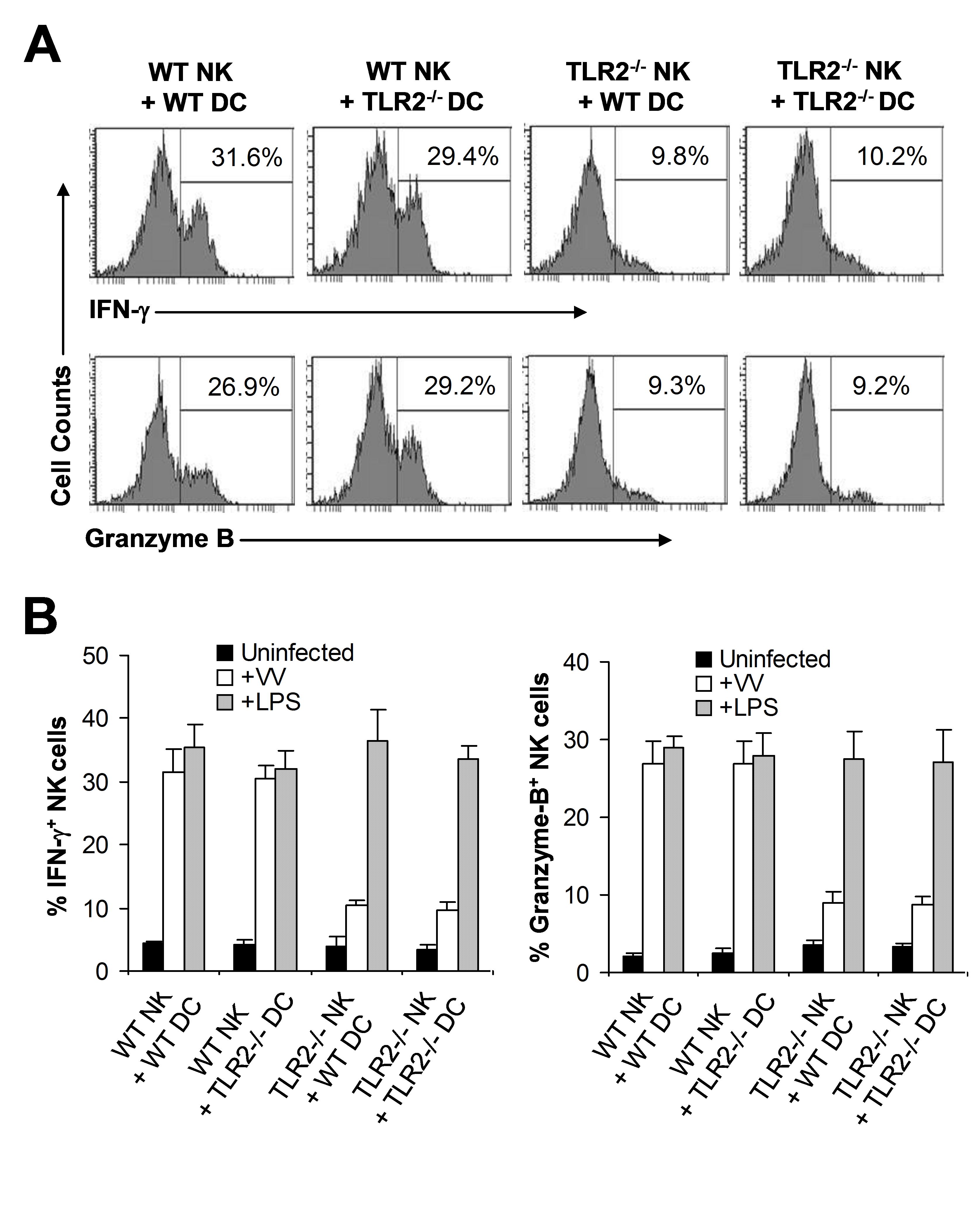 TLR2 signaling on NK cells, but not on DCs, is required for NK cell activation to VV in vitro.
