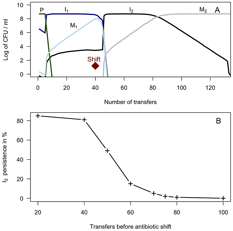 2A) Simulation results depicting the dynamics of integron-containing and - free populations driven by competition and antibiotic selection in serial transfer cultures.