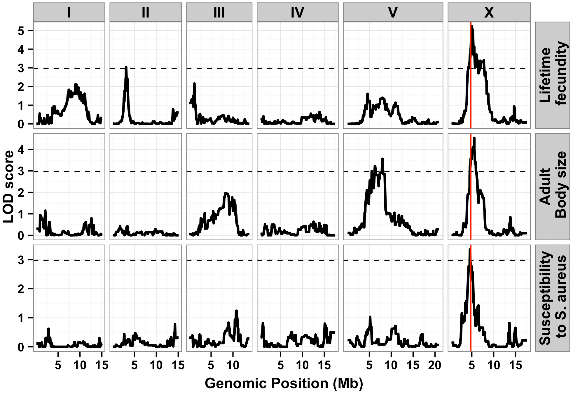 Linkage mapping results for lifetime fecundity, adult body size, and susceptibility to <i>S. aureus.</i>