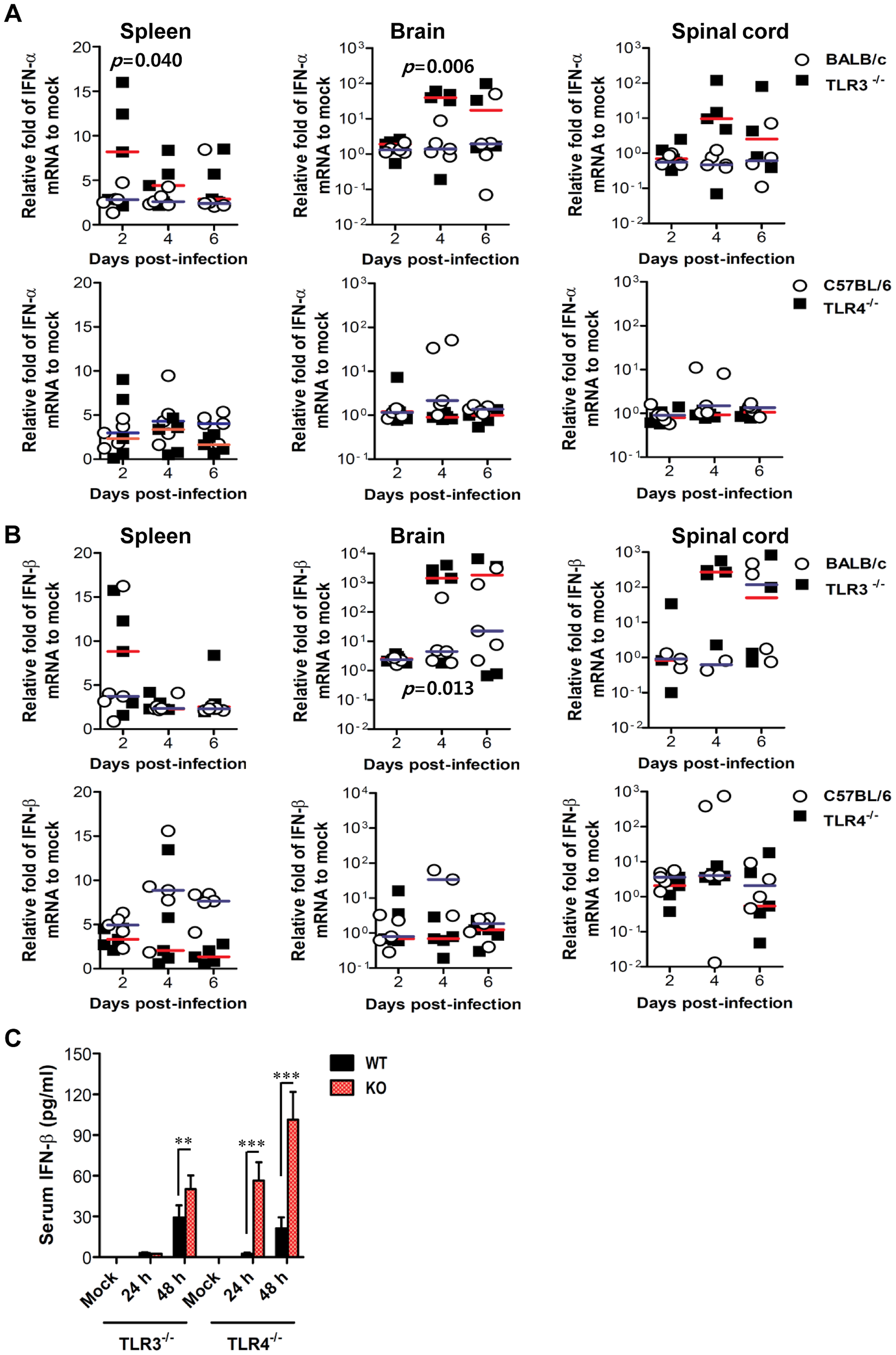 Localized and systemic type I IFN responses of TLR3<sup>−/−</sup> and TLR4<sup>−/−</sup> mice following JEV infection.