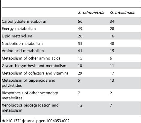 Metabolic enzymes identified in the KAAS analysis.
