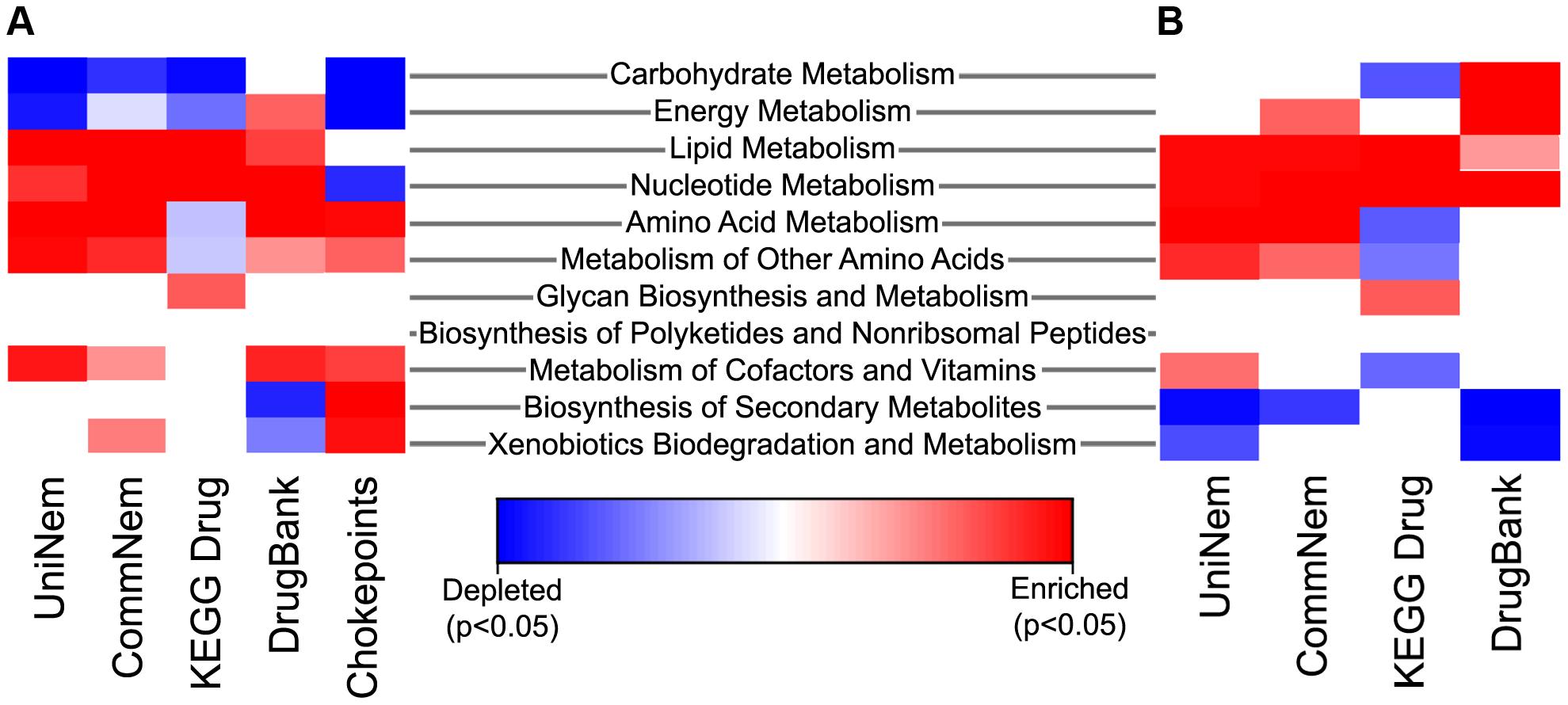 Heatmap indicating enriched and depleted KEGG metabolic pathways.