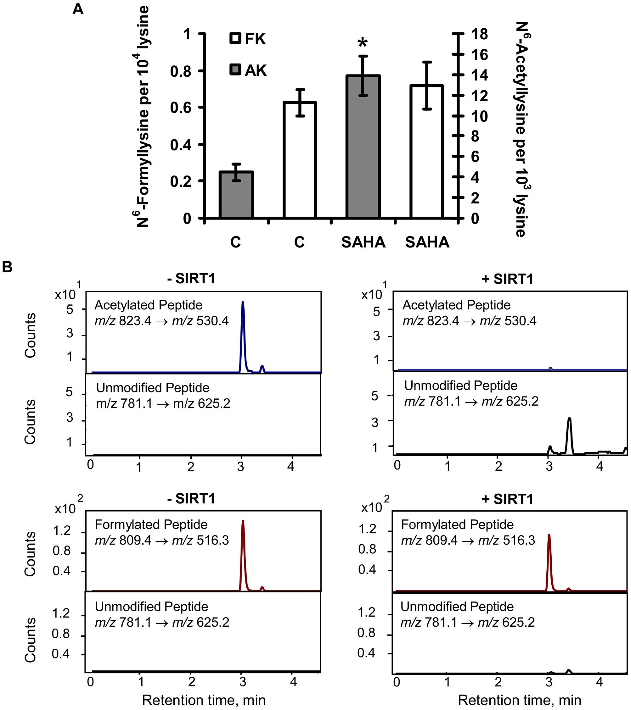 Effect of lysine deacetylases on N<sup>6</sup>-formyllysine.