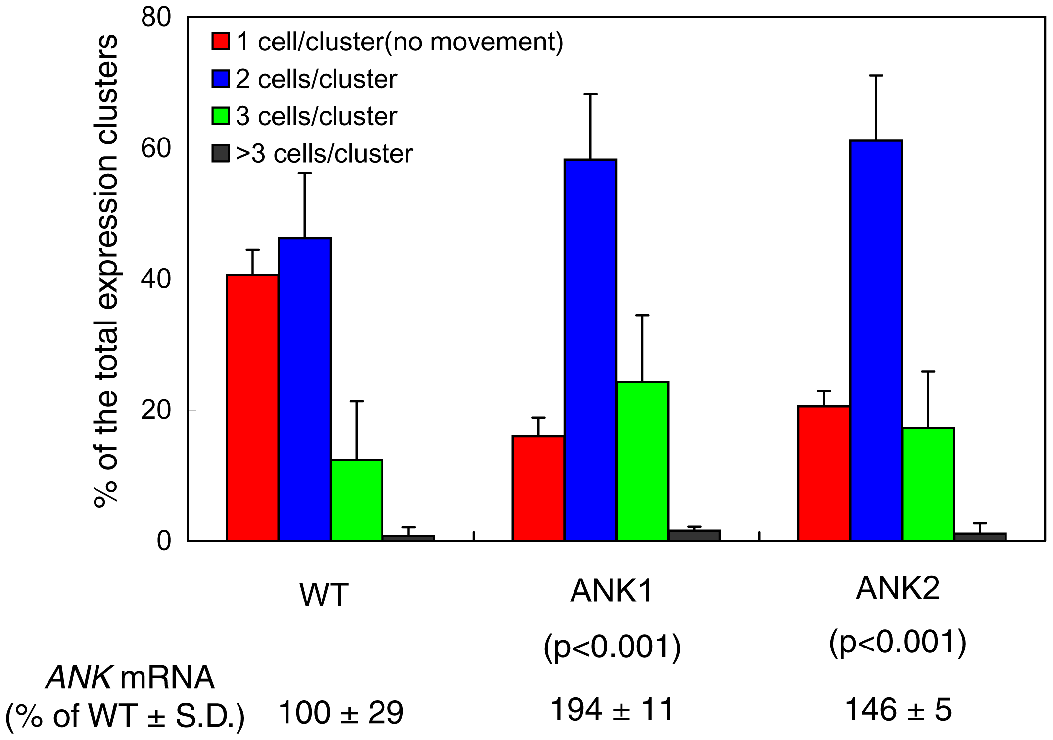 Enhanced cell-to-cell movement of MP-YFP in ANK1 and ANK2 plants.