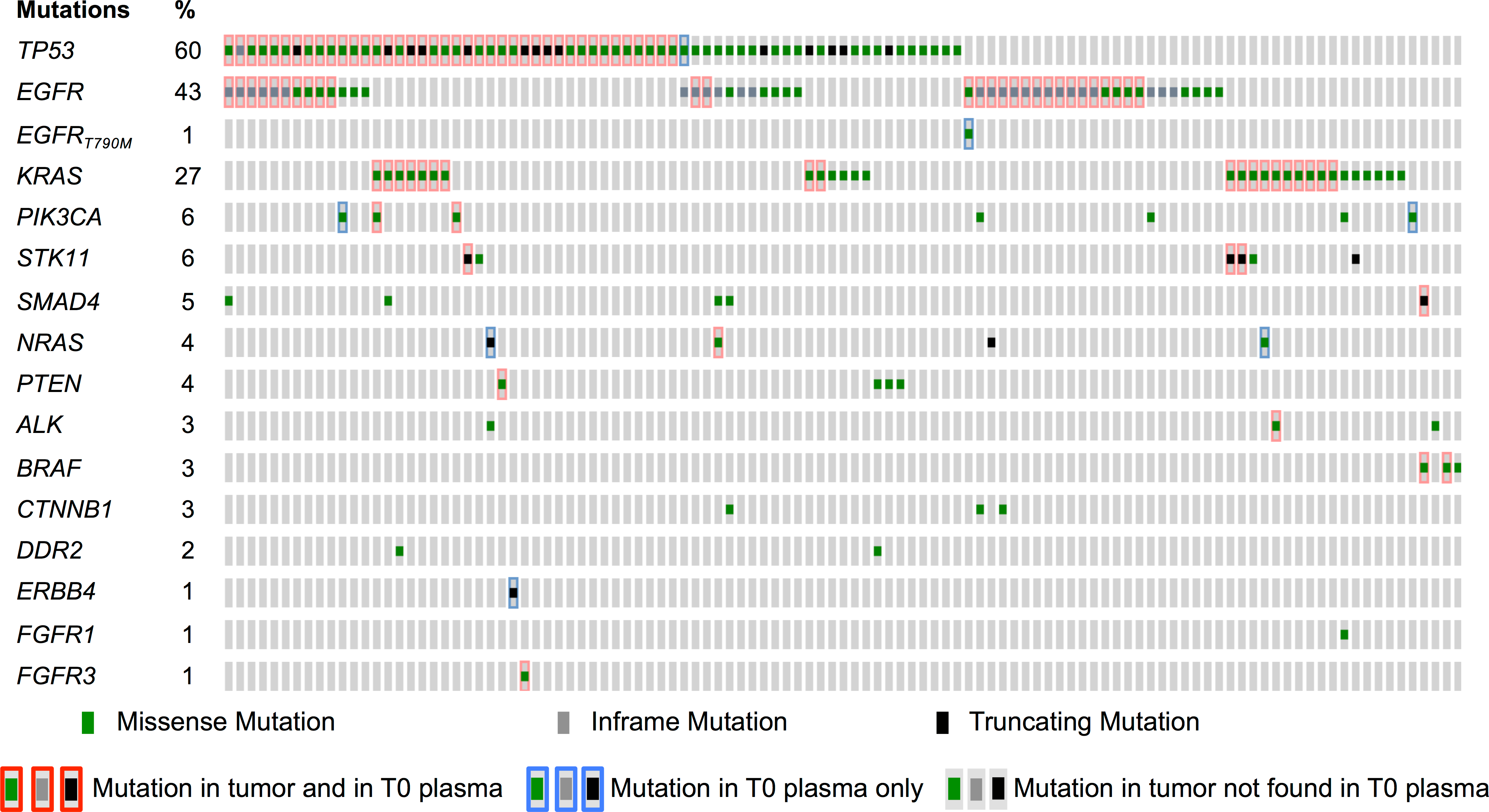 Mutations identified in tumor and in baseline plasma samples.