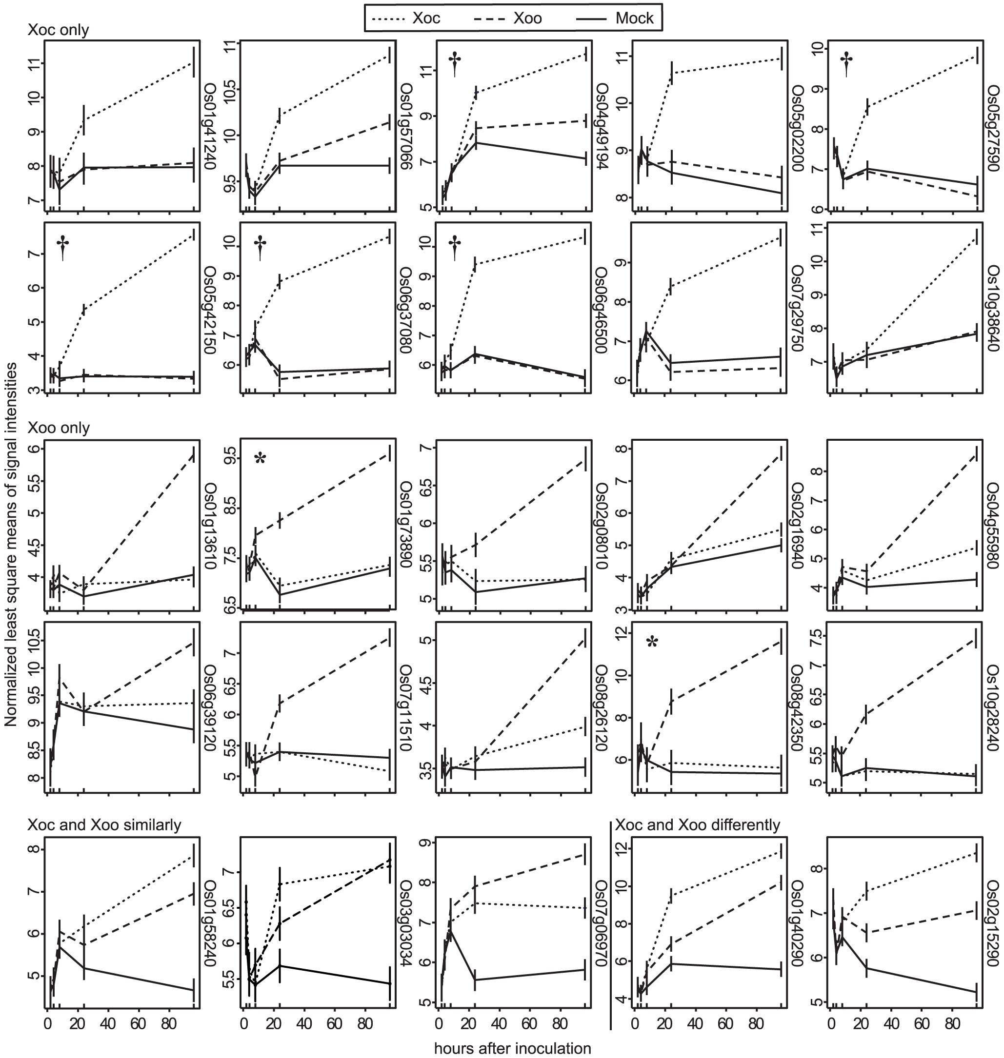 Expression patterns of the most significantly differentially expressed rice genes.