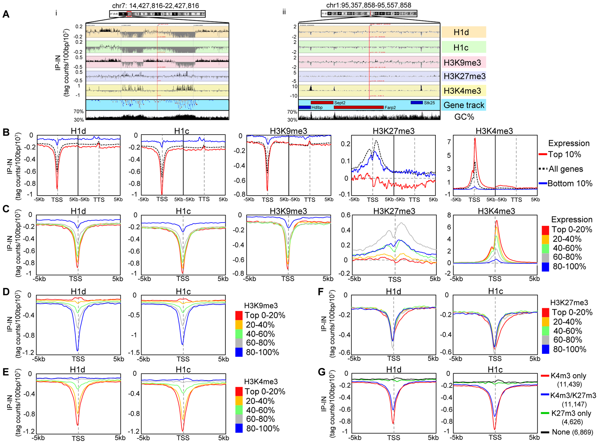 H1 is depleted at GC-rich, gene-rich regions and TSSs of active promoters.