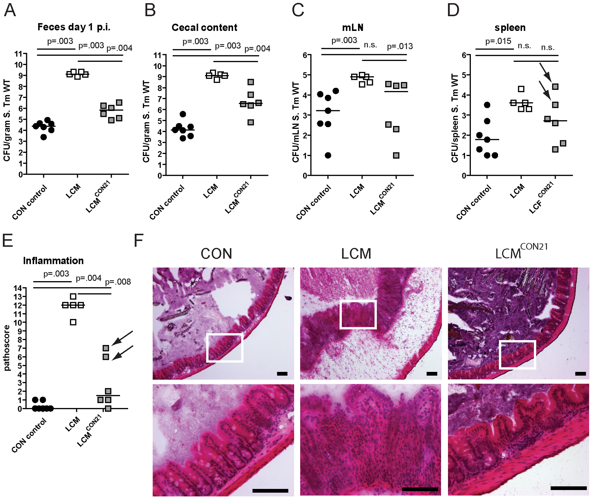 LCM gain CR by re-association with normal CON microbiota.