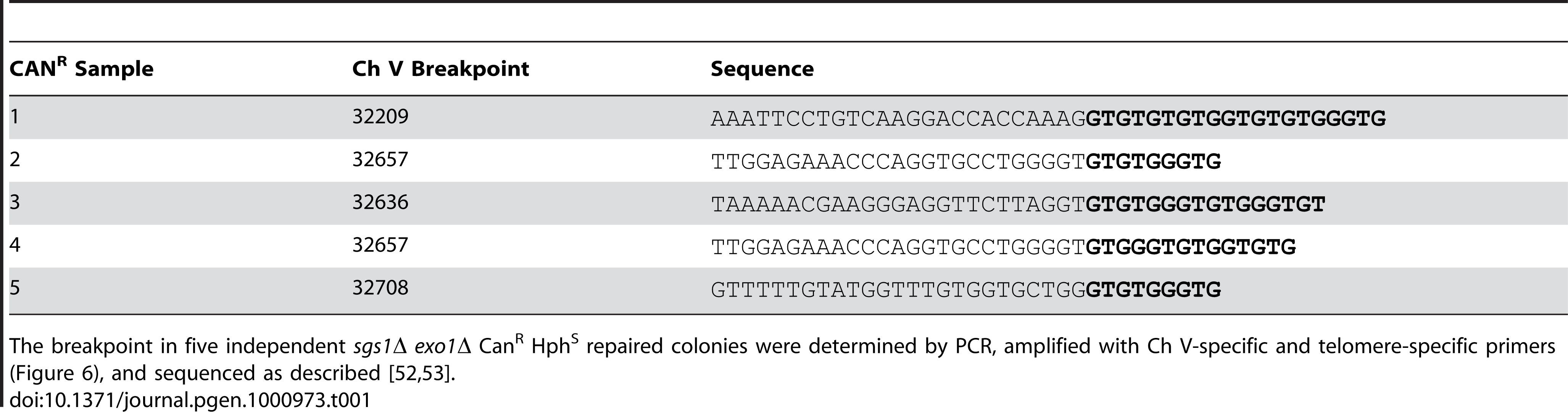 Sequenced breakpoints in <i>sgs1Δ exo1Δ</i> CAN<sup>R</sup> HPH<sup>S</sup> repaired colonies.