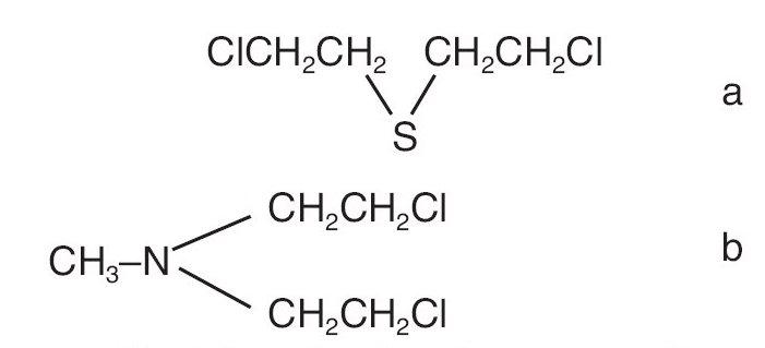 Mustard gas (a) a nitrogen mustard (b)