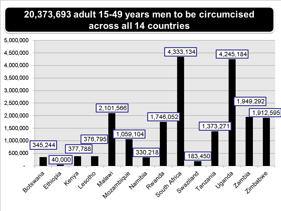 Number of circumcisions among men aged 15 to 49 years needed to reach 80% coverage in each of 14 priority countries/regions within five years.