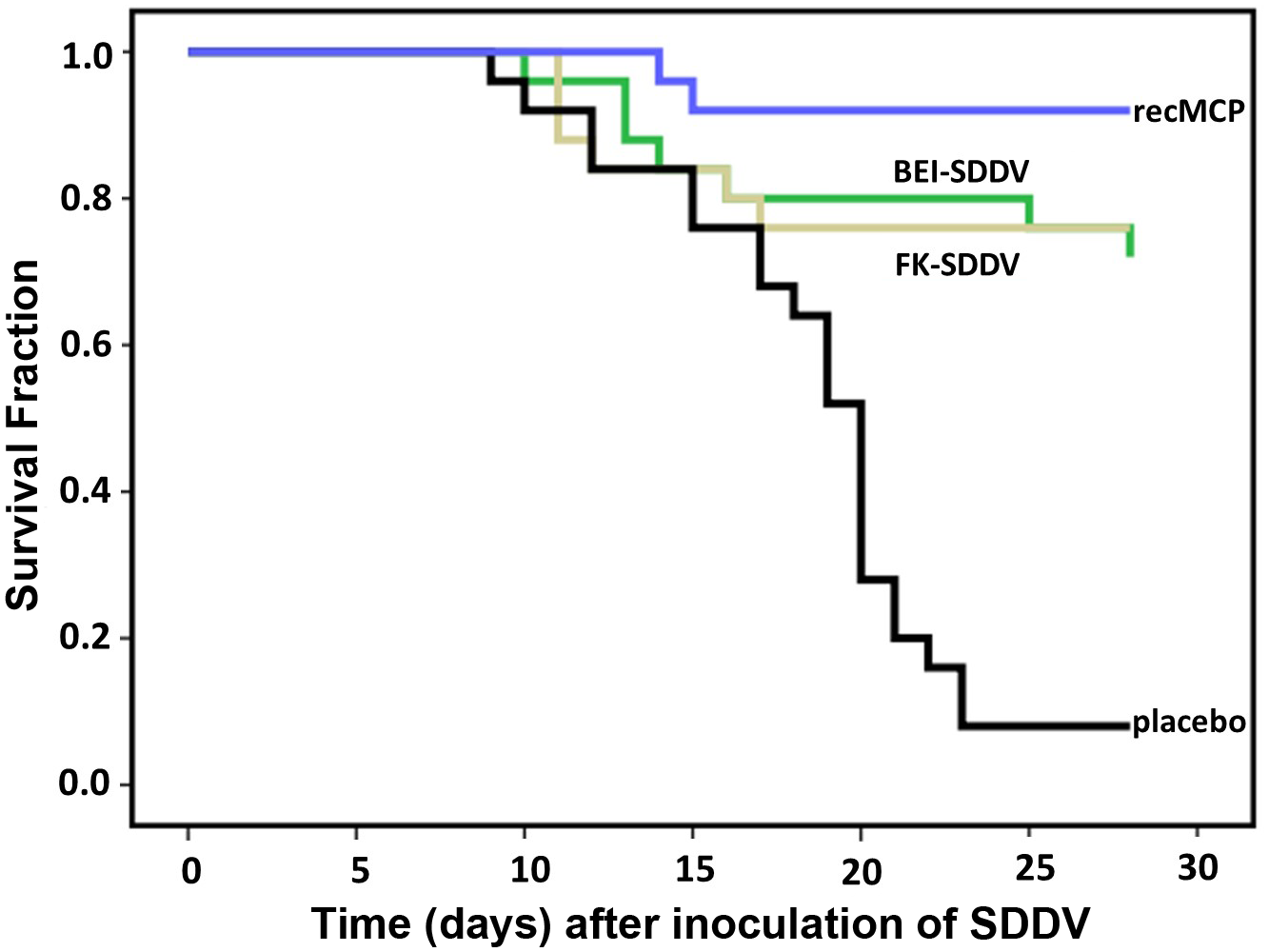 Protection of scale drop syndrome by vaccination of <i>Lates calcarifer</i>.