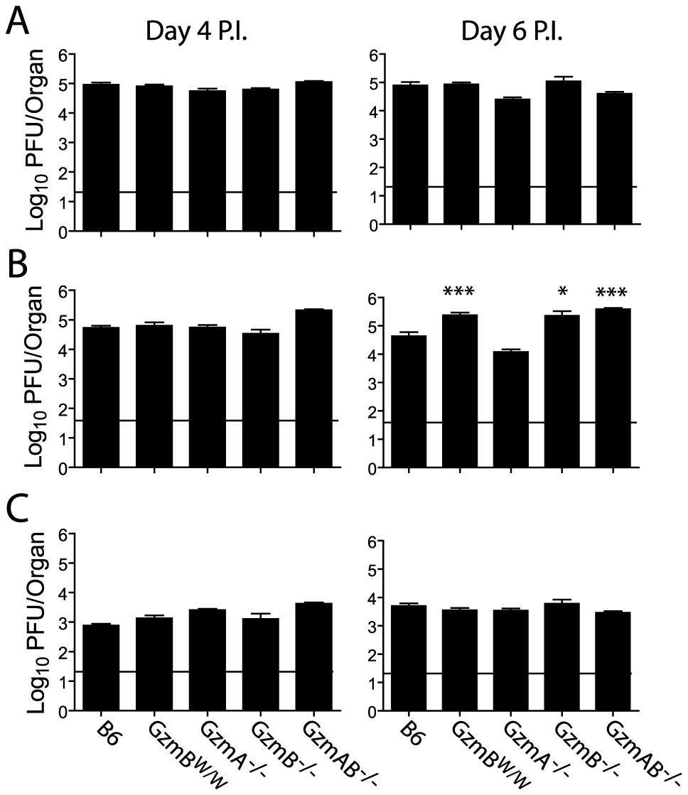 Increased viral load in mice lacking GzmB.