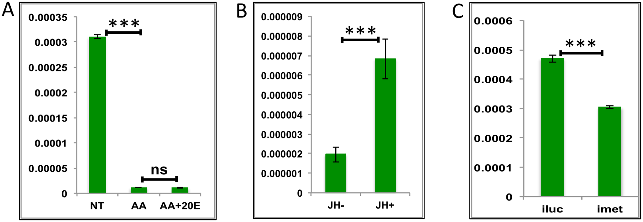 Effects of AAs, 20E and JH on representative LGs.