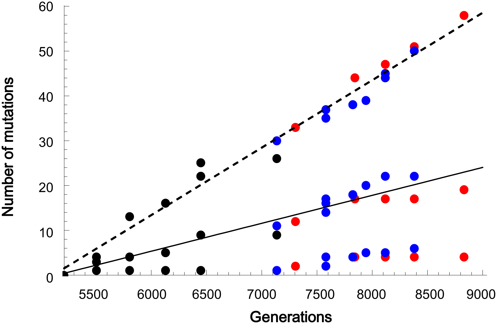 The linear accumulation of mutations over generations.