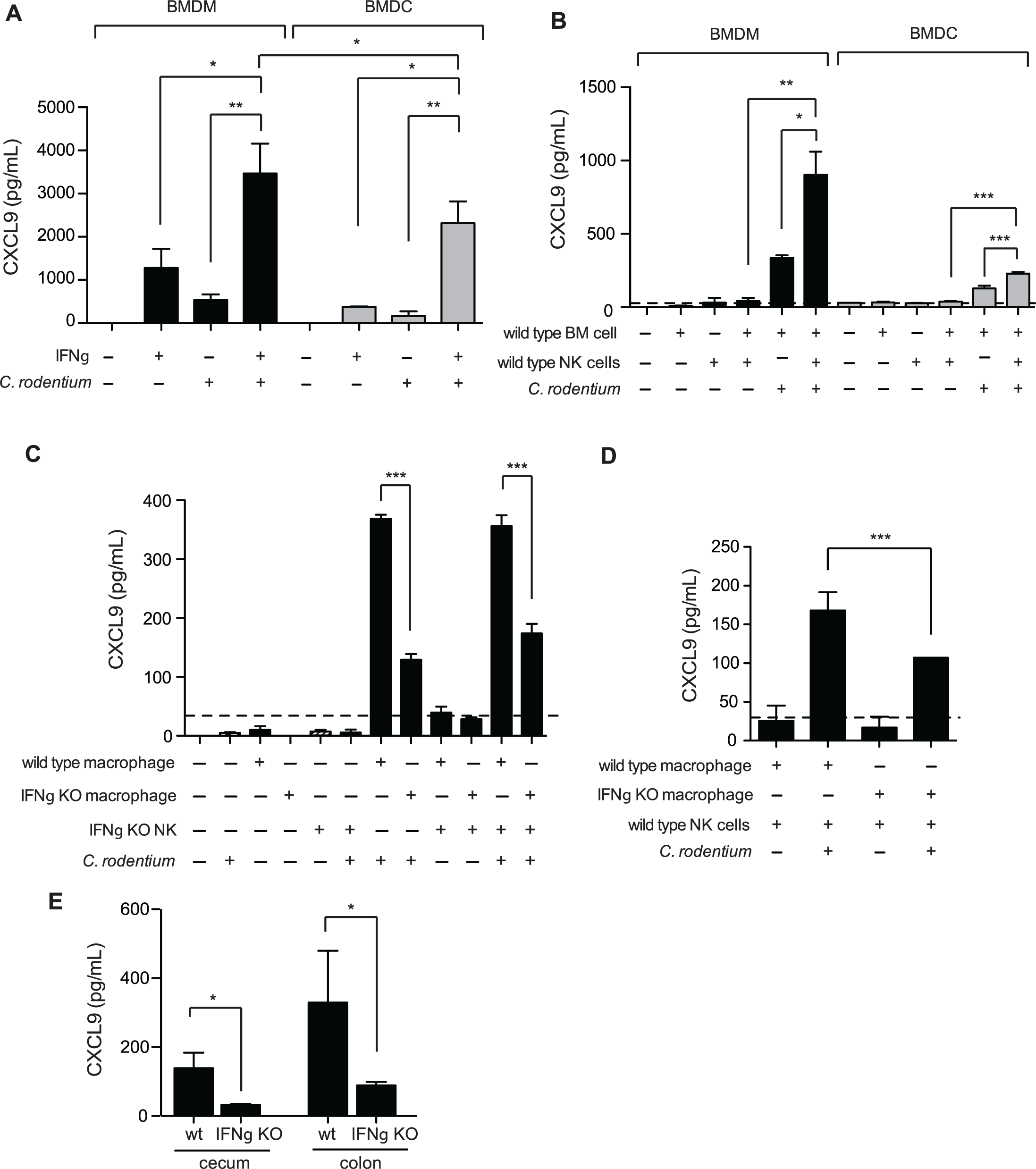 Macrophages require NK cells and IFNγ for optimal CXCL9 production.