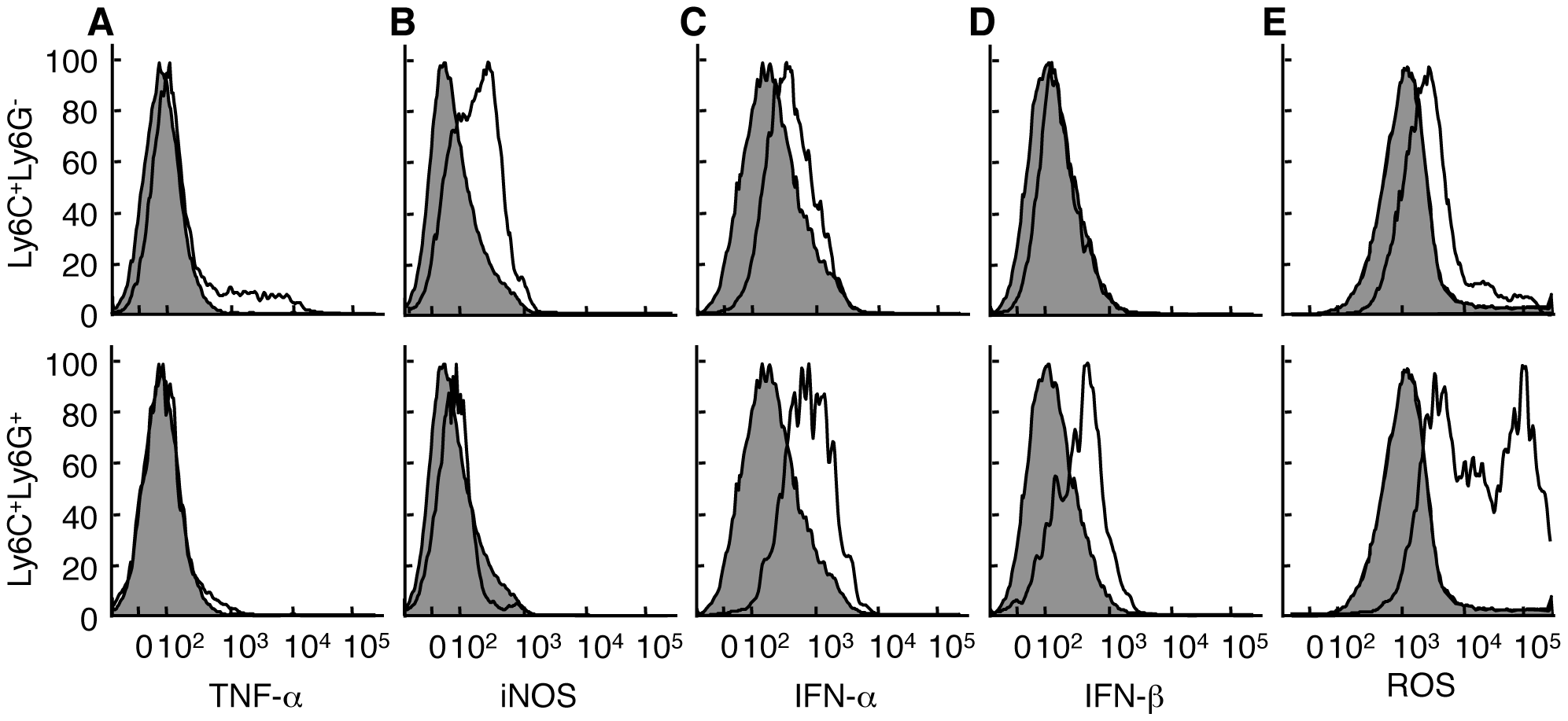 Ly6C<sup><b>+</b></sup>Ly6G<sup>-</sup> and Ly6C<sup><b>+</b></sup>Ly6G<sup><b>+</b></sup> cells have distinct functional profiles.