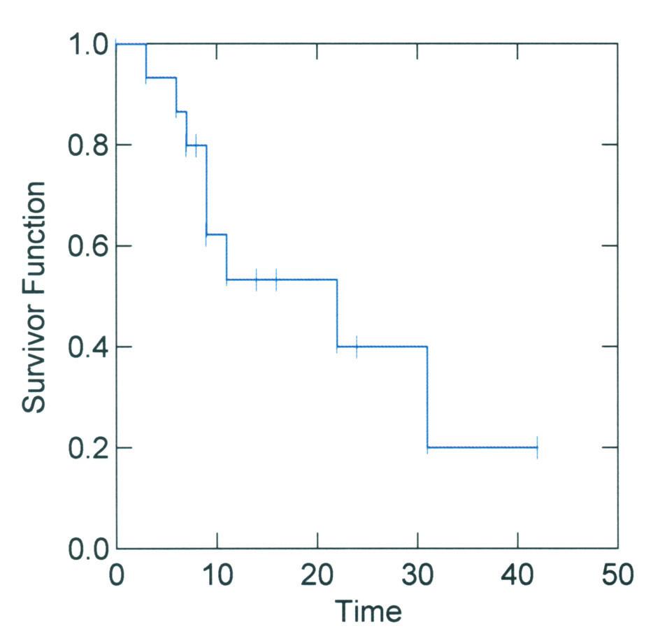 Křivka přežívání pacientů po TACE v našem souboru. Průměrná doba přežití byla 21 měsíců. Hodnoceno metodou podle Kaplana-Meierové Graph 1. Patient survival curve following TACE in the study group. The mean survival period was 21 months. Assessed using the Kaplan-Meier method