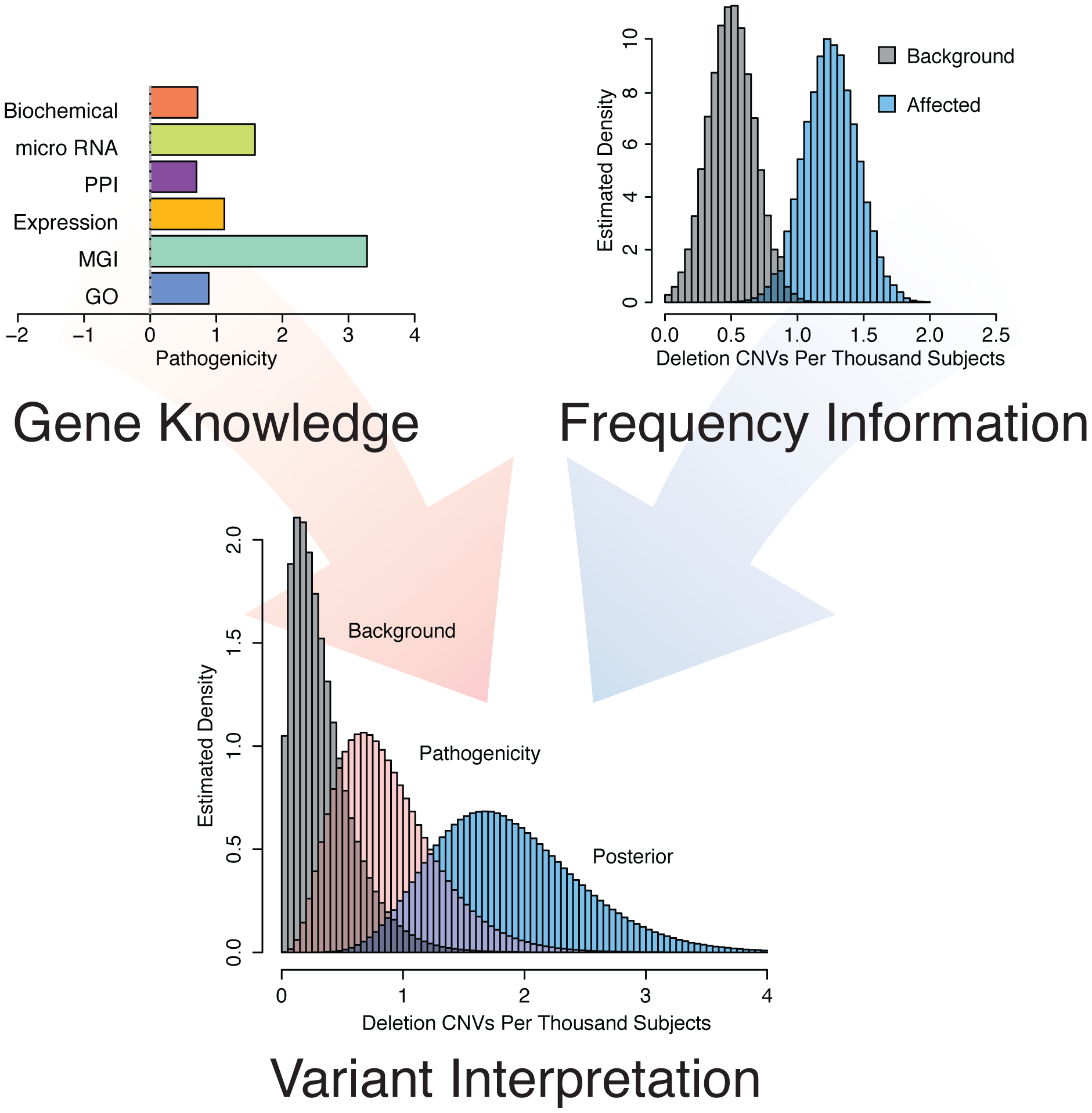 Concept of gene and variant prioritization. Top Left